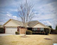 24818 Silent Spring Drive, Athens image