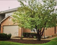 9429 Caledonia Drive, Tinley Park image