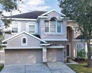 17803 Arbor Creek Drive, Tampa image