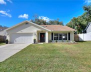 3662 Chatham Drive, Palm Harbor image