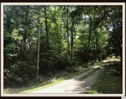 Lot 99 Ginseng Way, Sevierville image