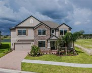 10817 Rolling Moss Road, Tampa image