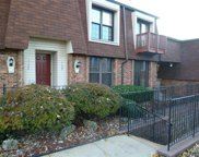 1133 Appleseed Unit #B, St Louis image