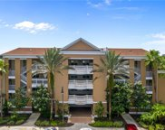 1112 Sunset View Circle Unit 304, Reunion image