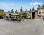 14715 SE 24th St Unit 203, Bellevue image