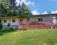 17229 Ok Mill Rd, Snohomish image