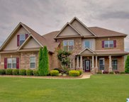 3000 Laurel Cove Way, Gurley image