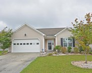 247 Red Carnation Drive, Holly Ridge image
