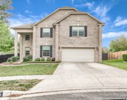 205 Long Cove Dr, Cibolo image