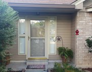 7909 Forest Xing, Live Oak image