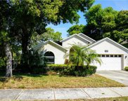 809 Duval Court, Safety Harbor image