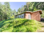 4234 PLACER  RD, Wolf Creek image