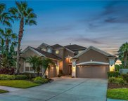2824 Blueslate Court, Land O' Lakes image