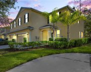 20513 Grand Vista Lane, Tampa image
