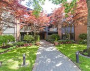 15300 17 Avenue Unit 210, Surrey image