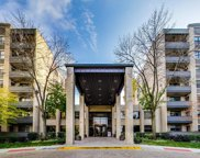 4545 W Touhy Avenue Unit #116, Lincolnwood image