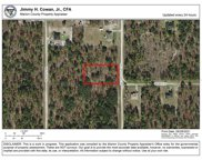 Sw 125th Court Rd, Dunnellon image