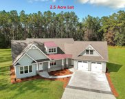 301 Angel Oak Drive, Bonneau image
