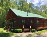 162 Chester Kelley Rd, Tellico Plains image