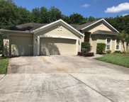 3213 Partridge Point Trail, Valrico image