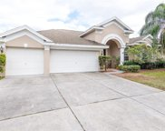 4332 Waterford Landing Drive, Lutz image