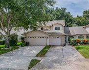 2554 Pine Cove Lane, Clearwater image