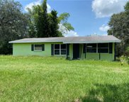 13151 Lincoln Road, Riverview image
