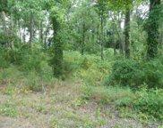 TBD Live Oak Dr, Hughes Springs image