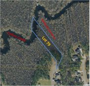 Lot 79 Woody Point Dr., Murrells Inlet image