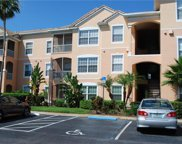 13500 Turtle Marsh Loop Unit 816, Orlando image