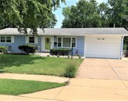 48 Forestwood, St Louis image