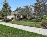 4494 SILVER BERRY CT, Jacksonville image
