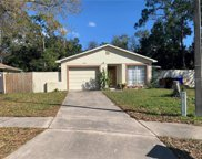 1314 Mill Creek Place, Kissimmee image