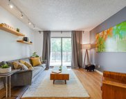 315 Tenth Street Unit 206, New Westminster image