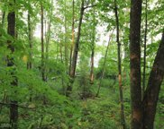 TBD Ross Woodlands Road, Aitkin image