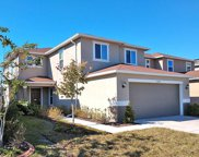 10725 Southern Forest Drive, Riverview image