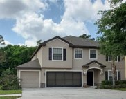 1786 Waterside Oaks Drive, Orange City image