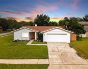 15802 Wheatfield Place, Tampa image