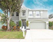 14911 Hidden Oaks Circle, Clearwater image