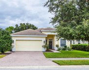 2136 Mesic Hammock Way, Venice image