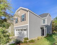 8904 Cat Tail Pond Road, Summerville image