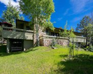 24121 Jerome Court, Golden image