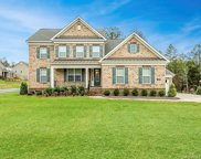 346  Monteray Oaks Circle, Fort Mill image