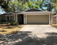 12 Harbor Cove Street, Safety Harbor image