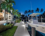 1266 Cobia Ct, Naples image