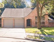 8530 Spring Green Drive, Houston image