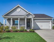 1105 Raven Cliff Ct., Conway image
