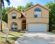 9803 Long Meadow Drive, Tampa image