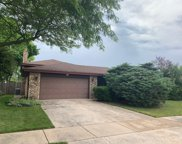 7450 Cashew Drive, Orland Park image
