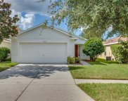 11557 Hammocks Glade Drive, Riverview image
